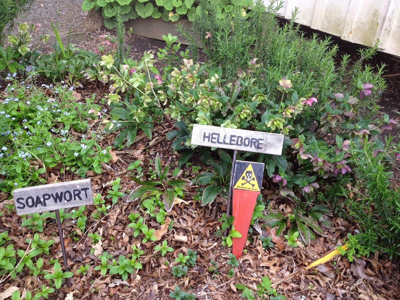 Foodie Excursion Howick Historical Village Nom Nom Panda