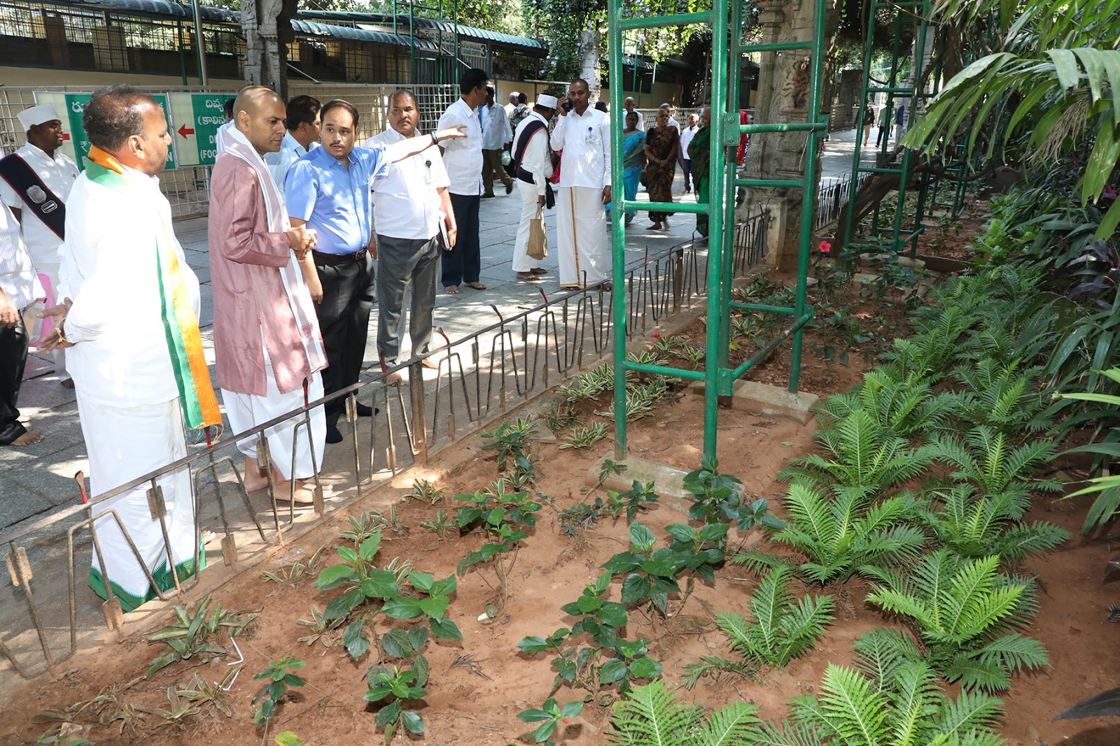 rspnetwork in: Sandalwood Plantation for Srivari Ritual Only