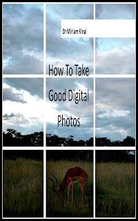 How to take good digital photos