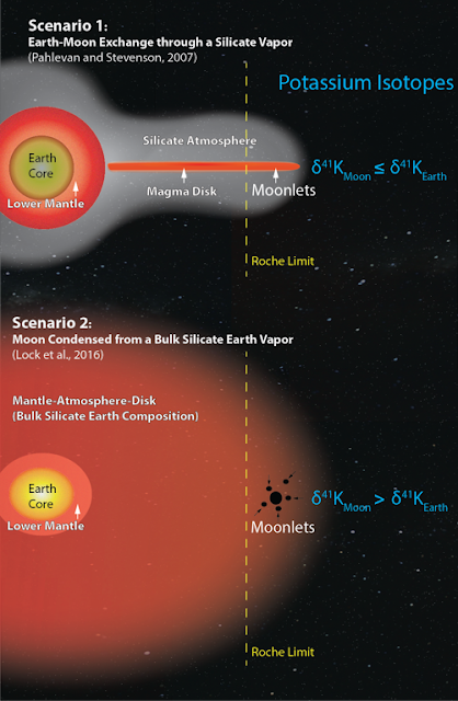 Two recent models for the formation of the moon, one that allows exchange through a silicate atmosphere (top), and another that creates a more thoroughly mixed sphere of a supercritical fluid (bottom), lead to different predictions for potassium isotope ratios in lunar and terrestrial rocks (right). (Illustration: Kun Wang)