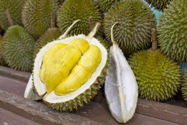 7 Kelebihan dan Khasiat Makan Buah Durian, durian, buah durian, khasiat durian