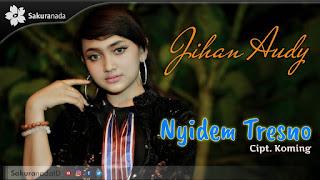 Jihan Audy - Nyidem Tresno