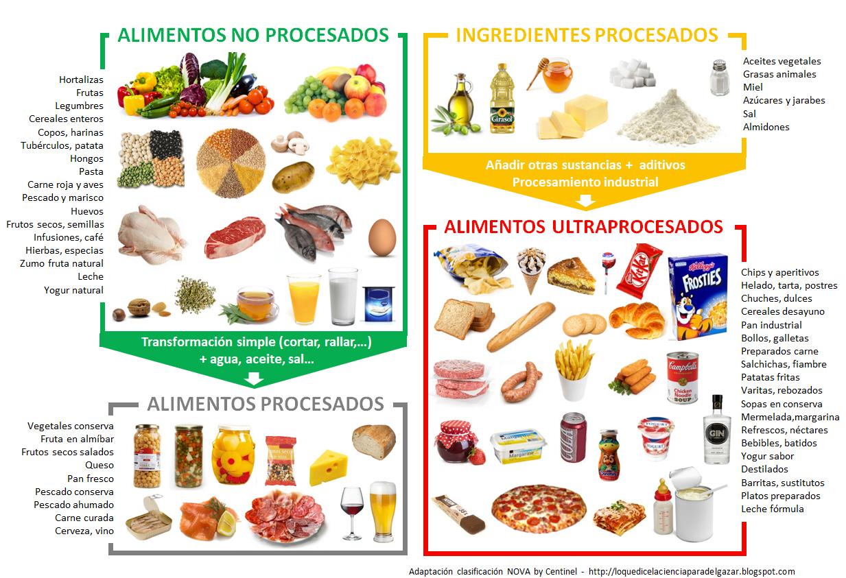 alimentos naturales y procesados para ninos de segundo grado