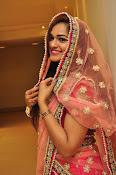 Aswhini latest sizzling half saree pics-thumbnail-6