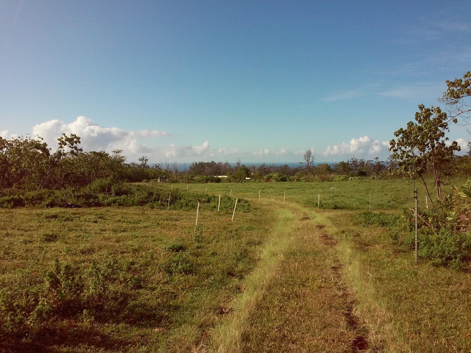 Liz in Hawaii