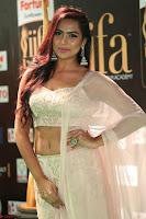 Prajna Actress in backless Cream Choli and transparent saree at IIFA Utsavam Awards 2017 0134.JPG