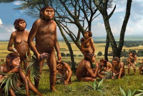 Manusia Purba di Indonesia (Awal Kehidupan Manusia Purba di Indonesia)