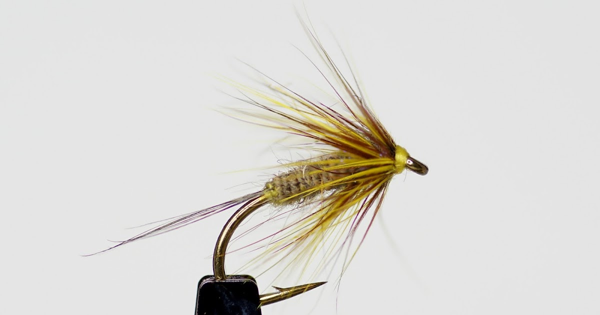 Double soft hackle fly fish food fly tying and fly for Fly fishing classes near me