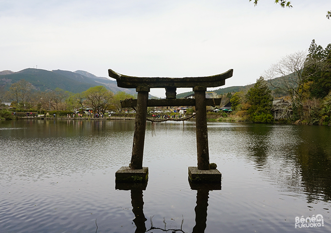 Floating torii on lake Kinrinko, Yufuin