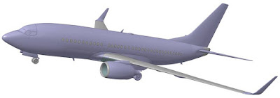 Boeing 737-700 picture 4