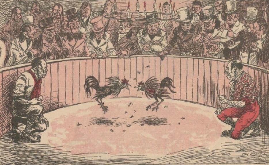 Image result for antiguas peleas de gallos
