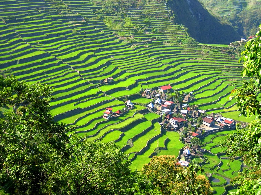 Rice Terrace Village in Ilocos Region