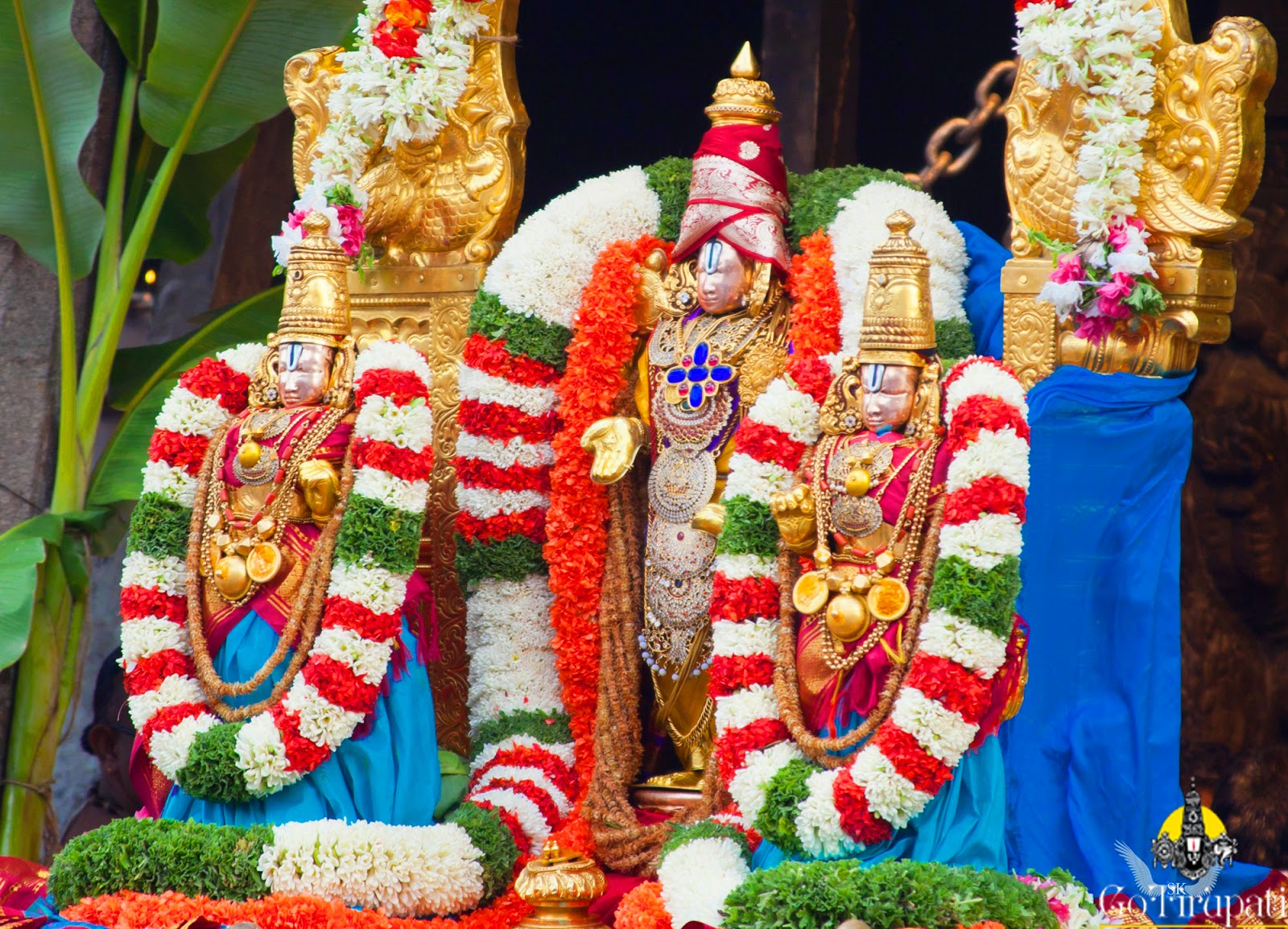 Tirupati Darshan Timings Tirumala Balaji Today Seva