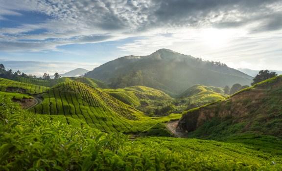 4 Wisata Alam di Malaysia yang Wajib Dikunjungi
