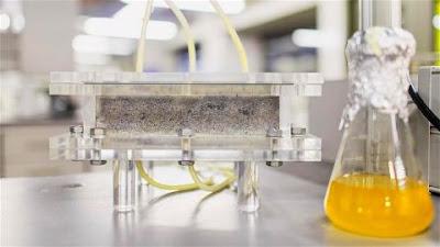 primer bio-ladrillo de orina