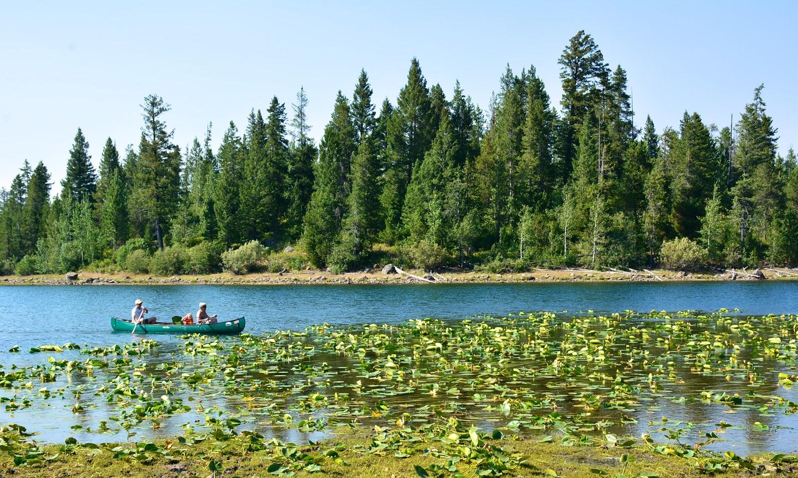 Canoeing in Targhee National Forest