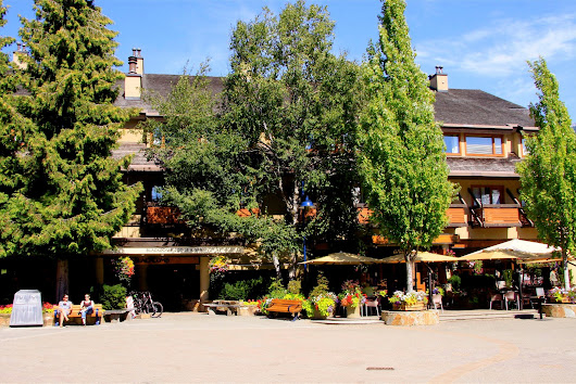 Blackmb Lodge in Whistler Village - Return on Investment, 2014 vs 2015 Rental Revnues