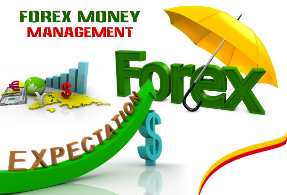 Forex investing salary