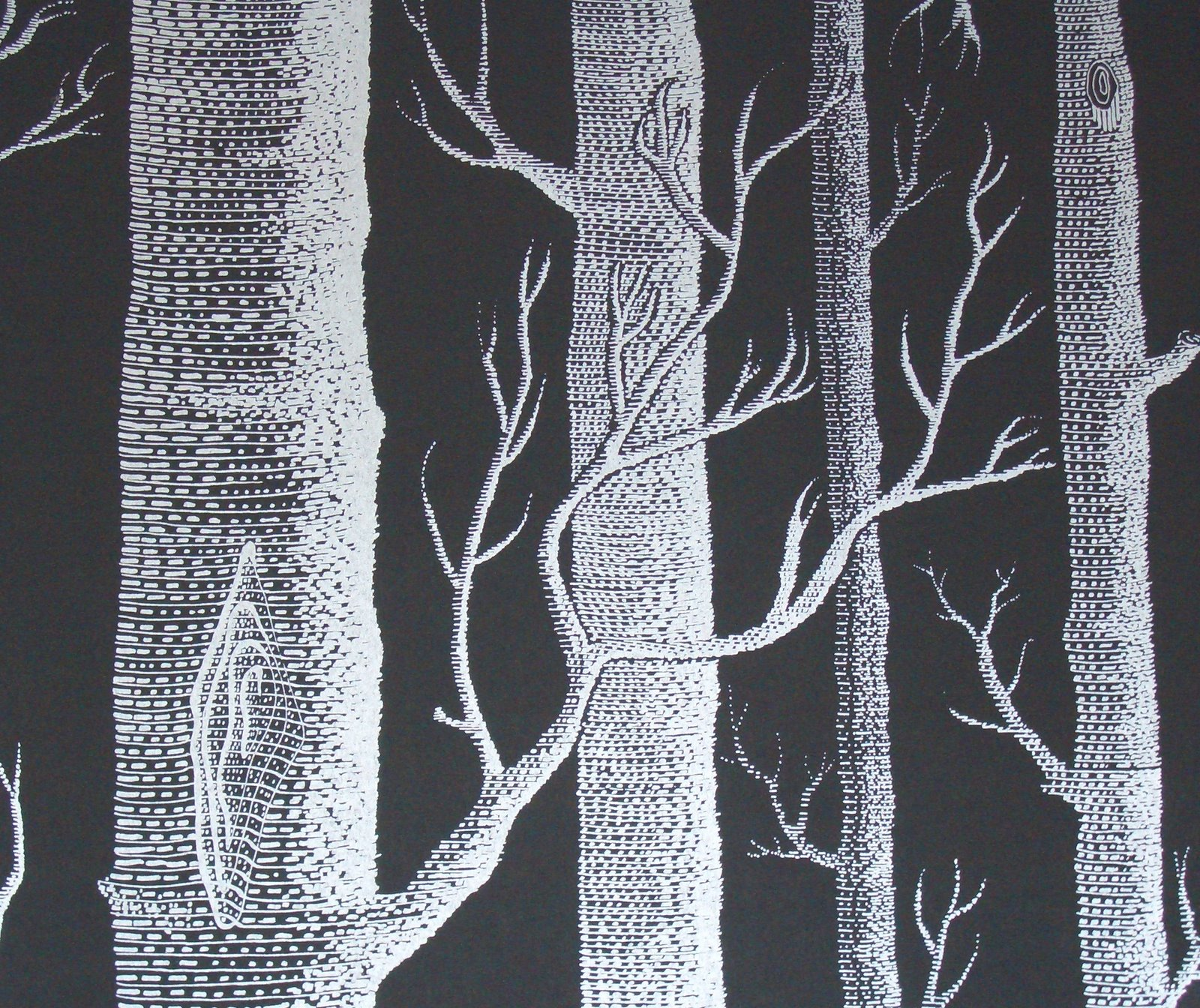 wallpaper wallpaper cole son woods. Black Bedroom Furniture Sets. Home Design Ideas