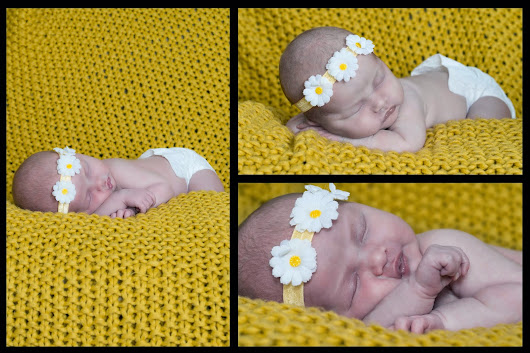 New Born Photography