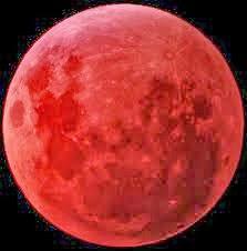 Up Coming Blood Moons: November 2013