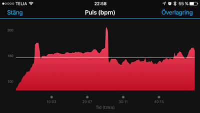 puls%2Bearly.PNG