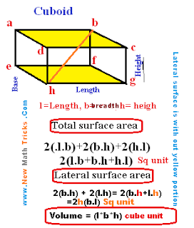 Cuboid-total-lateral-surface-area-volume-math-tricks-total-surface-lateral surface