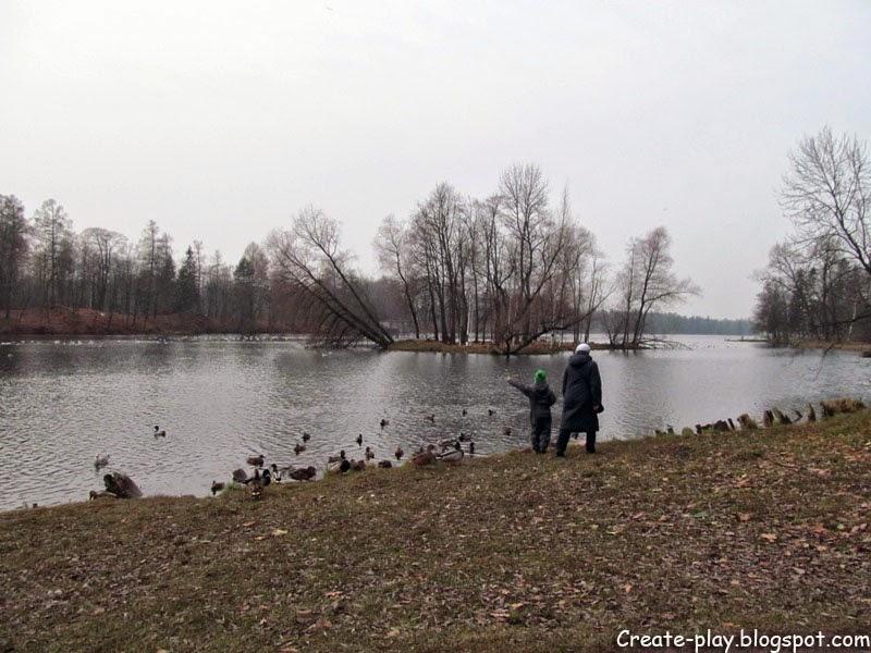 ноябрь Гатчинский парк