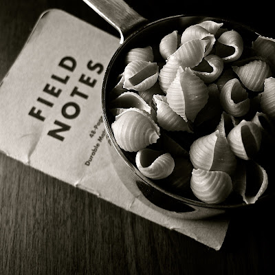 Shells with Notes: photo by Cliff Hutson
