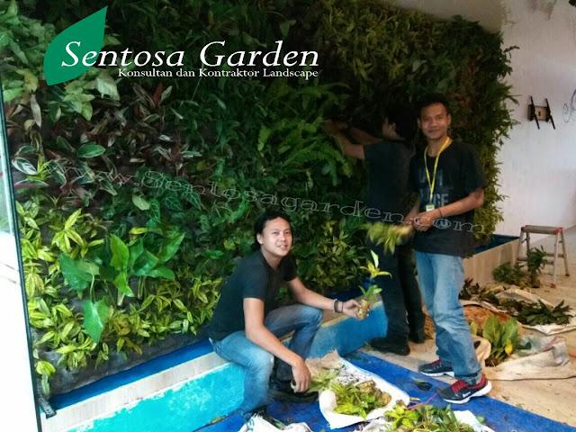 VERTICAL GARDEN JAKARTA | TUKANG TAMAN JAKARTA