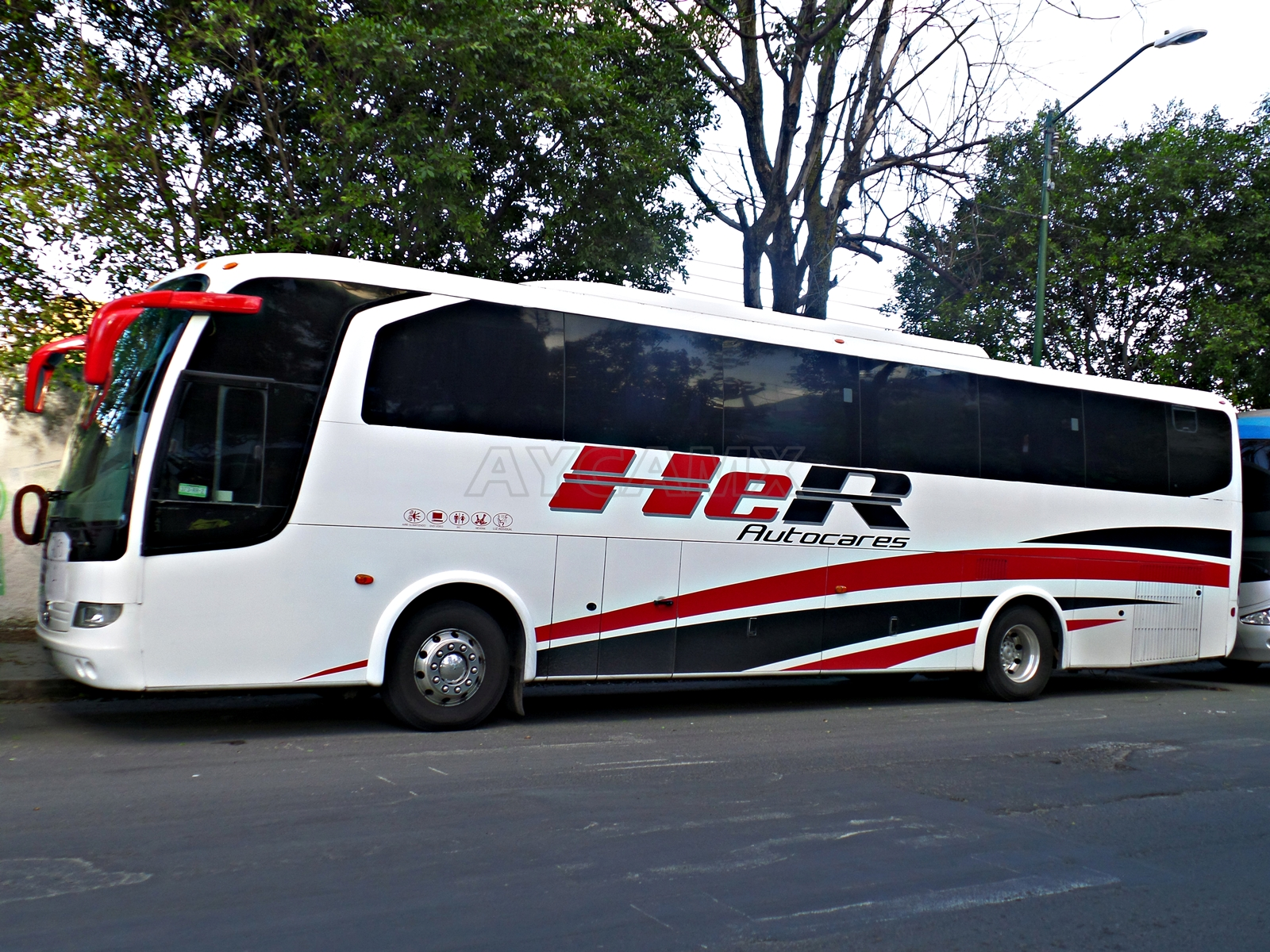 Image Result For Autocares Y Autobusesa