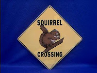 squirrel crossing sign