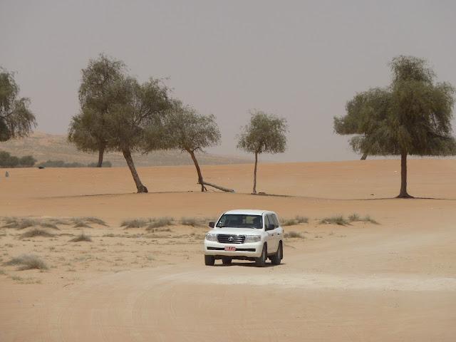 rouler dans le désert de Wahiba à Oman