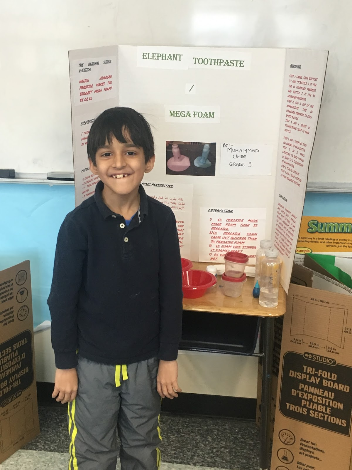 Step Into 3rd Grade Science Fair Projects