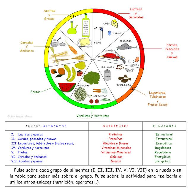 La Rueda de los Alimentos (actualización)