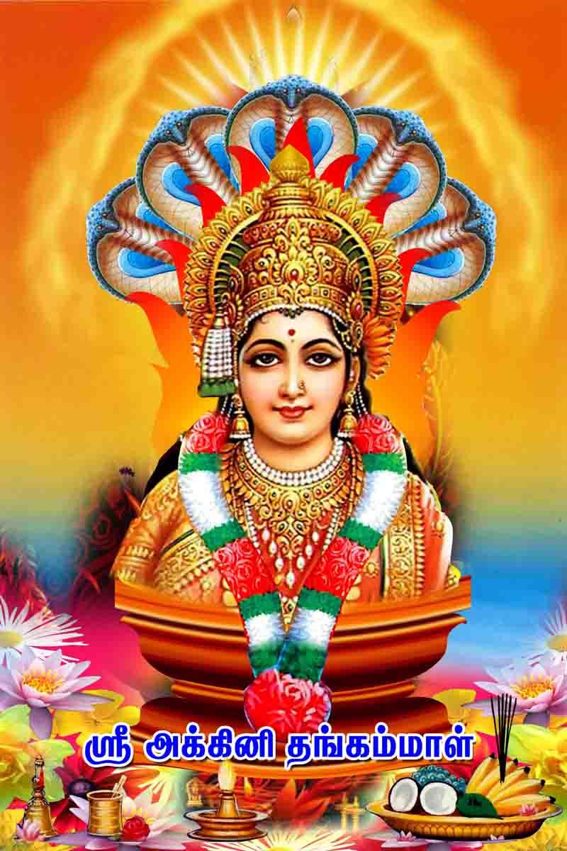 Gautam Buddha Hindi Quotes Wallpaper Lord Amman Tamil God Amman Precious Photos God Wallpaper