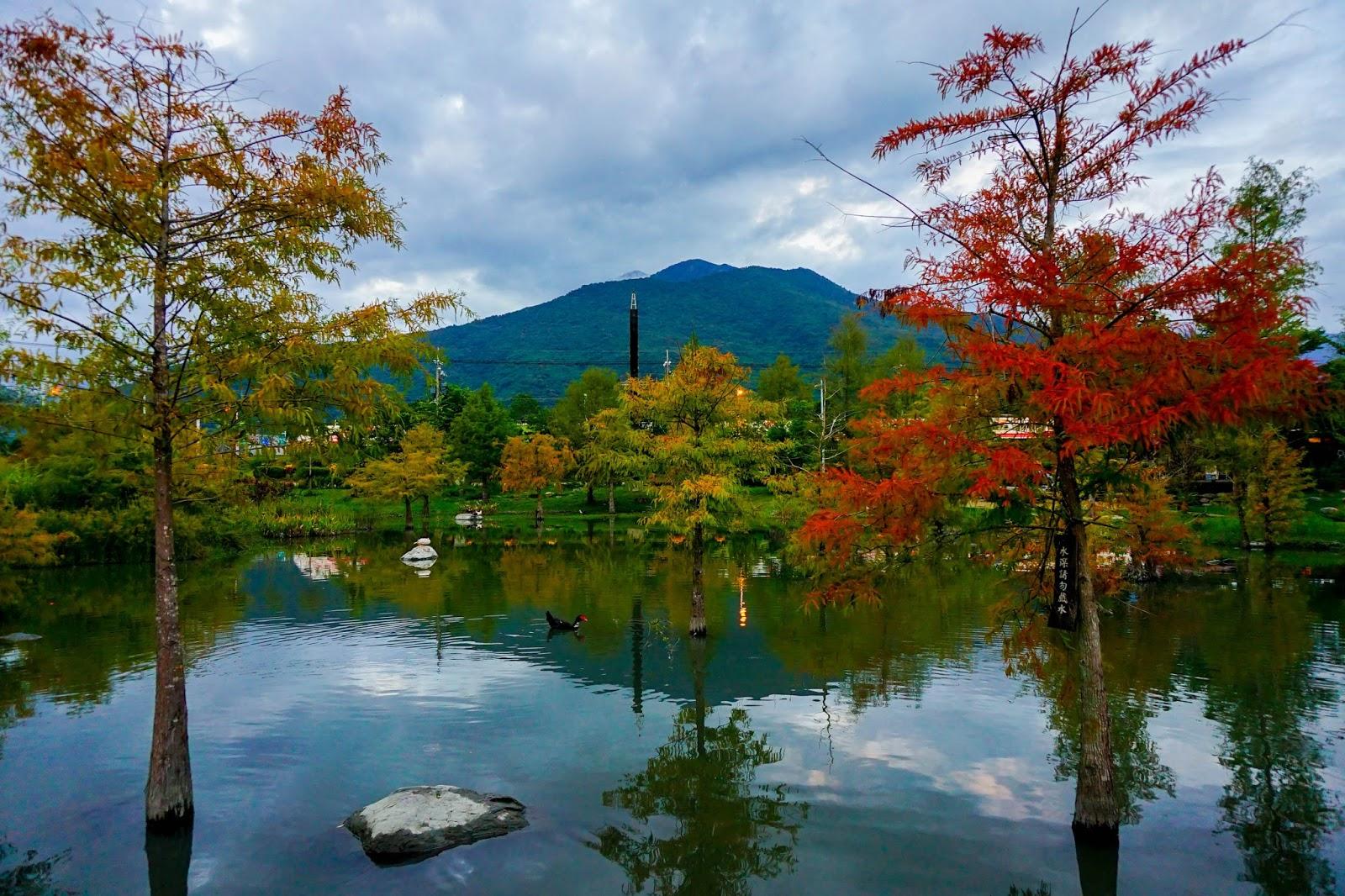 beautyanxiety.com-beautyanxiety.com-cultural-park-forest-DSC08905.jpg