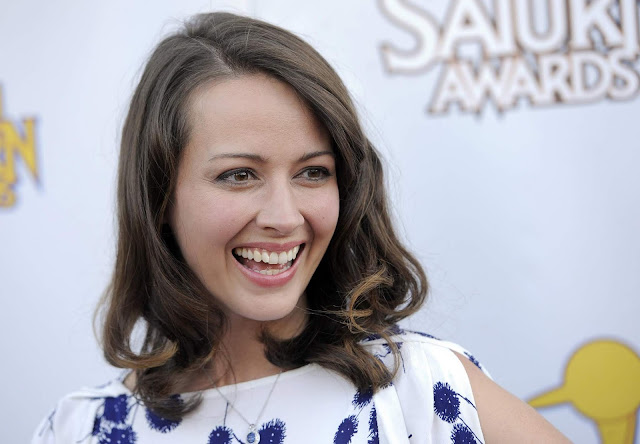 Hot Amy Acker HD Wallpapers