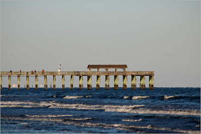 State Park Pier at low tide