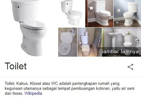 30 Fakta Unik dan Menarik Dari Toilet yang Penting Untuk Diketahui