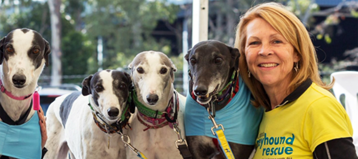 Greyhound Rescue is Moving - Appeal | Australian Dog Lover