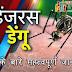 Important information about dengue in hindi  - डेंगू के बारे में महत्वपूर्ण जानकारी