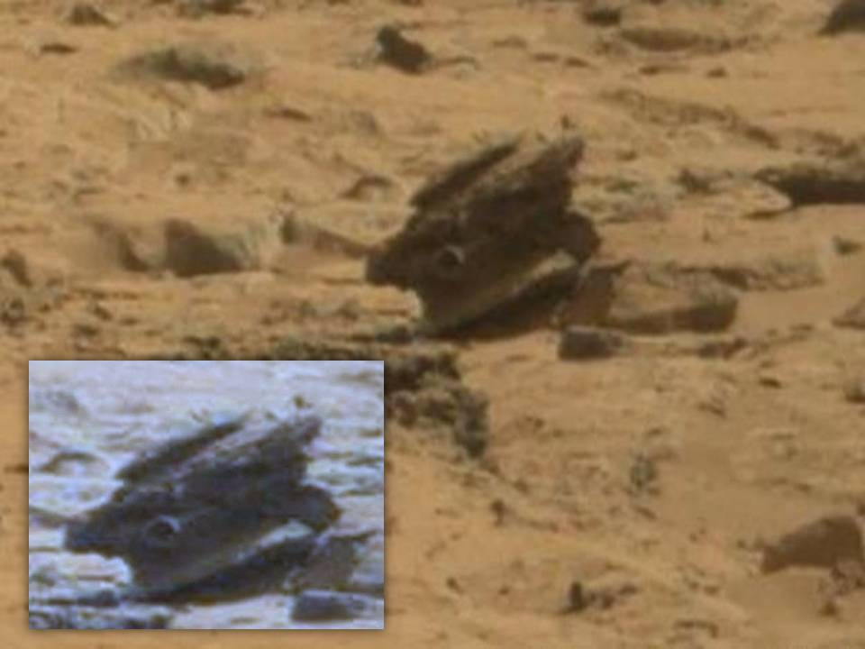 Discovered on Mars:Toltec Face, Ancient Building ... |Mars Unexplained Anomalies