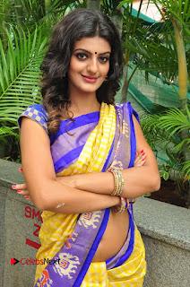 Model Tanishq Tiwari Pictures in Saree at Silk India Expo Curtain Raiser  0049.JPG
