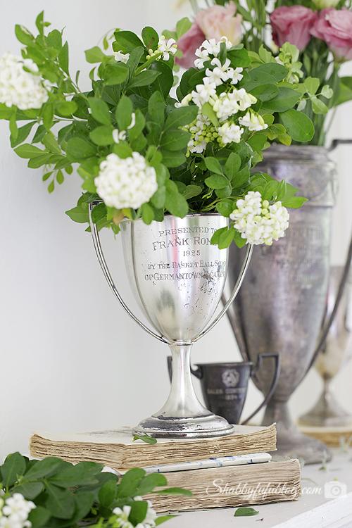 vintage trophy cups vases