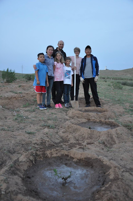 Tree planting in Mongolia's Middle Gobi