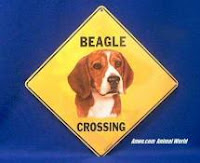beagle crossing sign