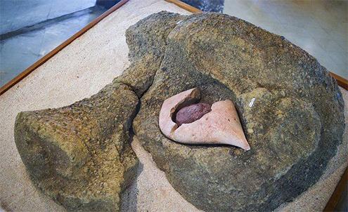 aringa ora ojo moái moáis anakena playa de isla de pascua misterio historia sergio rapu haoa descubrimiento coral rostros vivientes antepasados easter island