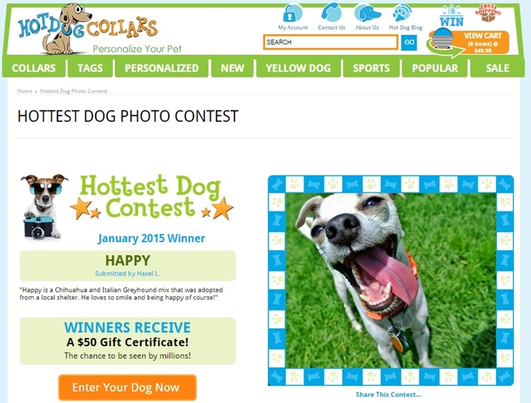 dog photo contest