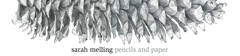 Sarah Melling: Pencils and Paper